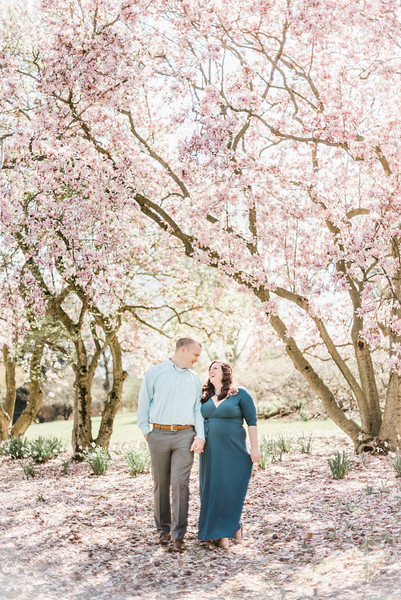 Darcey and Andrew's Engagement at the Hershey Gardens