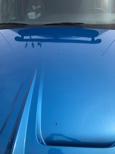 Neat LT Paint Issues
