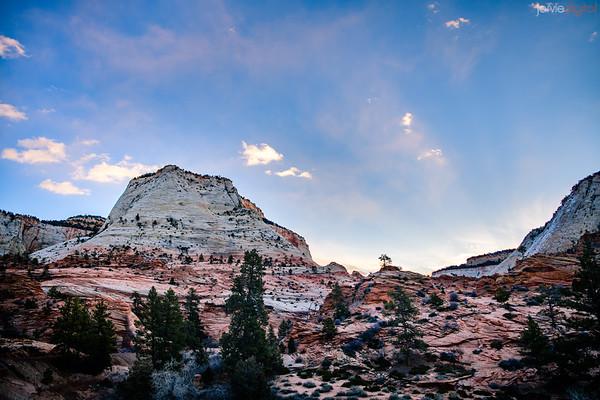 Zion Landscapes