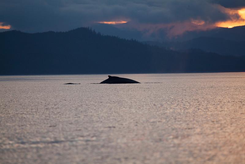 Alaska-161.jpg