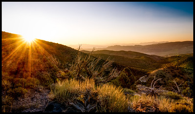 2019-09-02 - White Mountains - Paradise - Bishop - Bristlecones