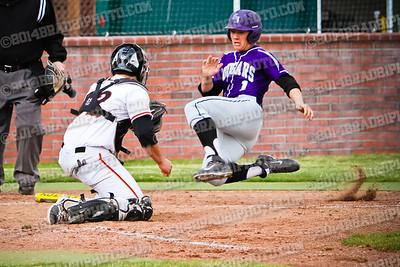 DHS Baseball 2014