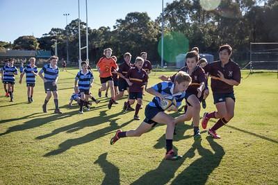 Year 8 Rugby Versus Hale