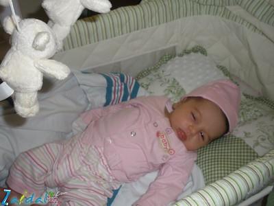 18_newborn_fadia_imad-waw