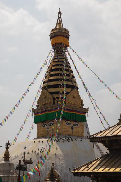 190407-102906-Nepal India-5807.jpg