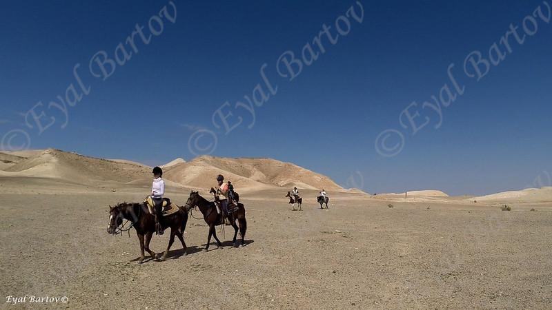 Sirin Riders 8.jpg
