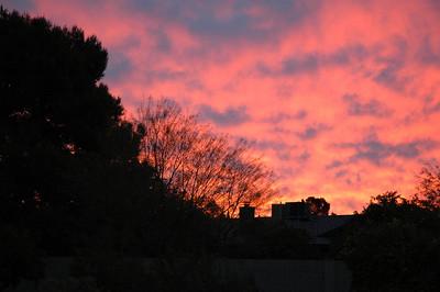 2010 Sunrise
