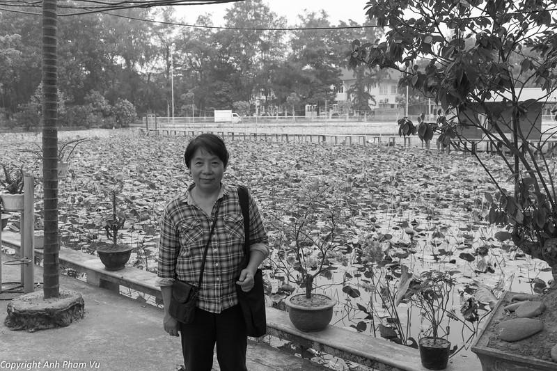 Chua Pho Linh October 2014 013.jpg