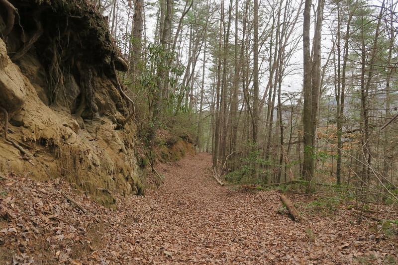 Wintergreen Trail -- 1,780'