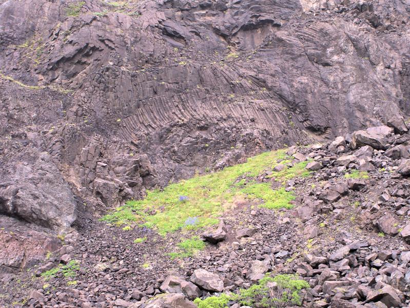 Columnar basalt Skaftafellajokull.jpg