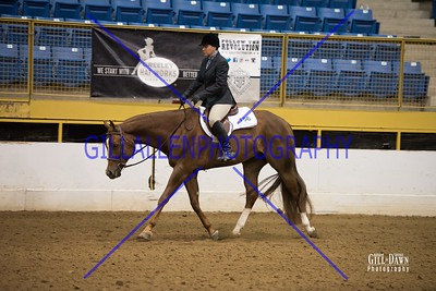 MAR 23 Hunter Under Saddle  All (later by Back Number)