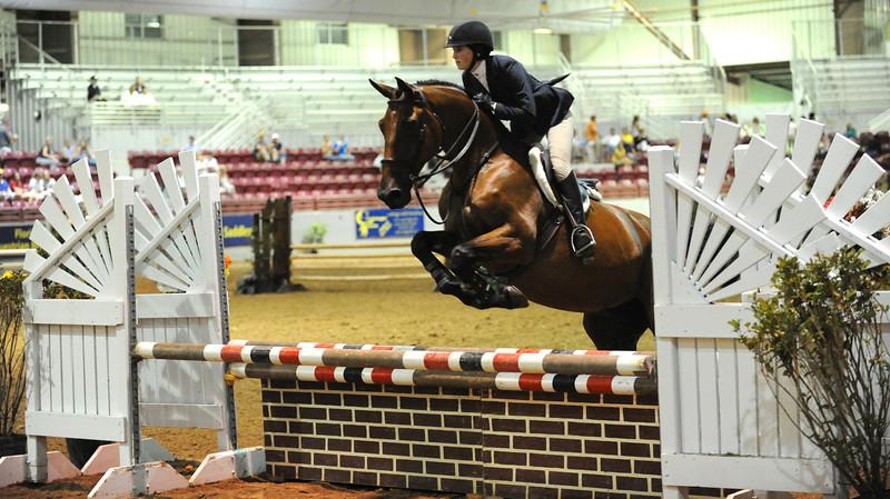 Horse show (33).jpg