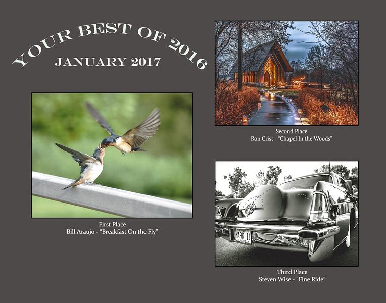 January 2017 Print Competition.jpg