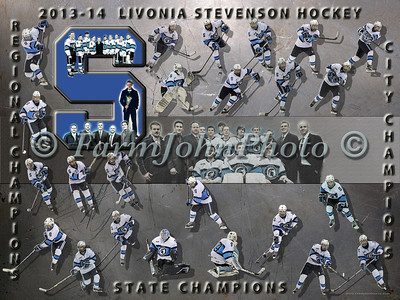LSHS Hockey Team Collage Review
