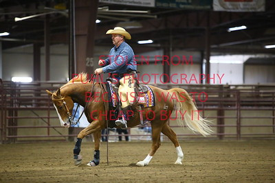 Sun 66. AA Ranch Reining