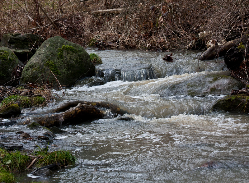 stream at Black River 011213.jpg