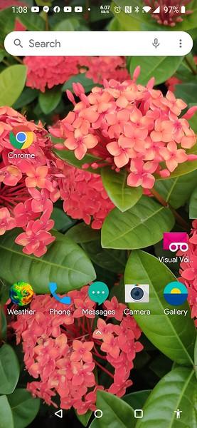 Screenshot_20200422-010849.jpg
