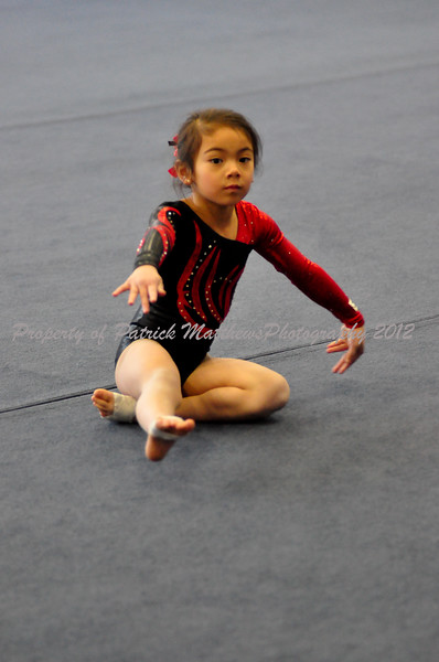 YMCA Gymnastics meet 2 1-22-12