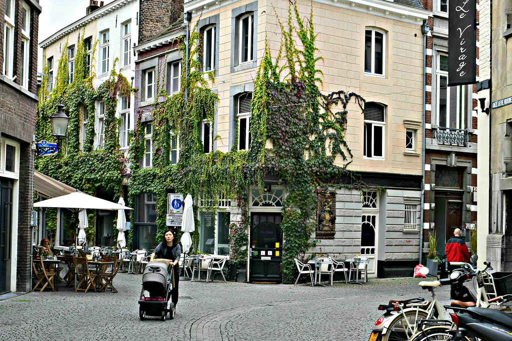 Plants taking over Koestraat, Maastricht, Limburg, The Netherlands