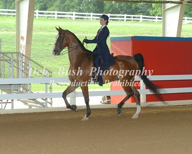 CLASS 49 EQUITATION OPEN CHAMPIONSHIP
