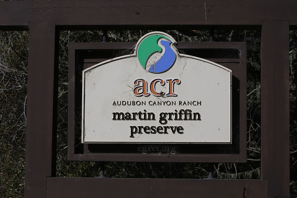 ACR - Martin Griffin Preserve Nov 1, 2018 Docent Hike