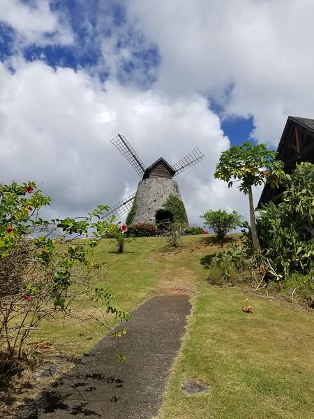 Martinique (53).jpg