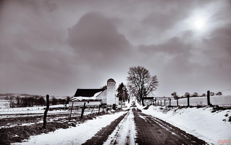 Amish America