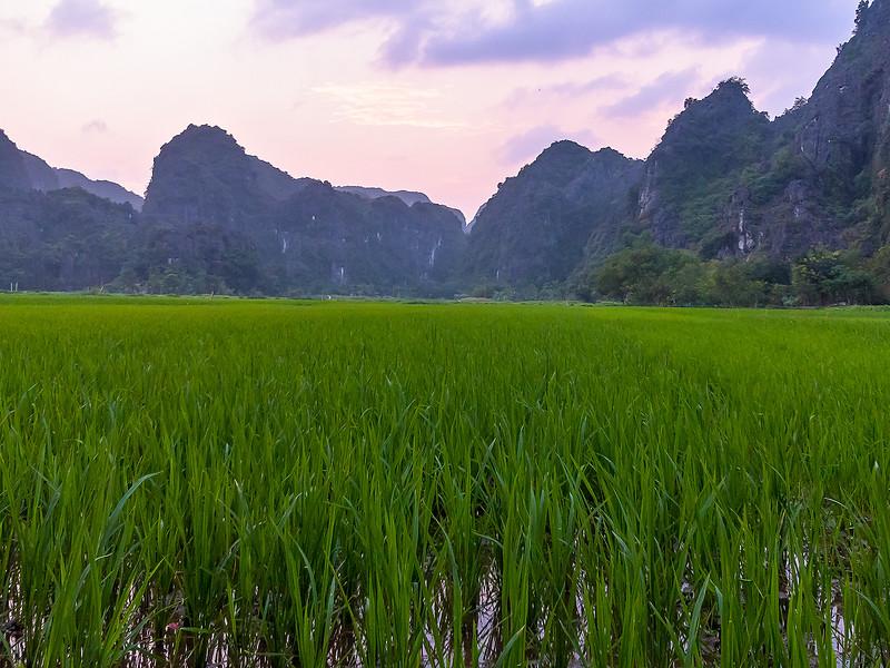 Vietnam Ninh Binh_P1090148.jpg