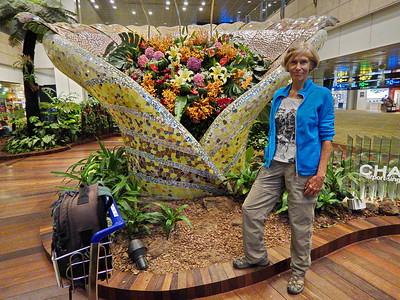 Flughafen Singapur • 新加坡樟宜机场 • Xīnjiāpō Zhāngyí Jīchǎng • Singapore Changi Airport
