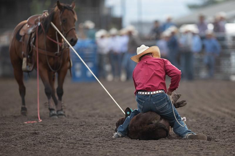 2019 Rodeo D (169 of 673).jpg