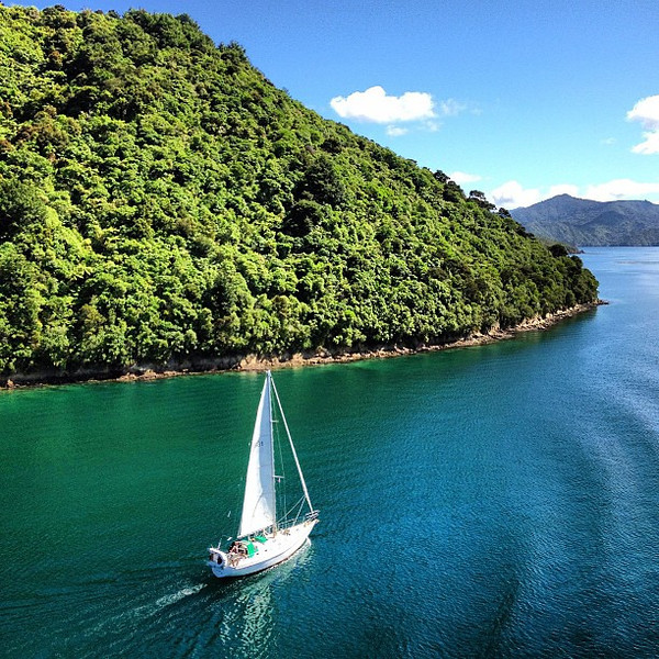 A passing sailboat carves our ferry wake -- Queen Charlotte Sound, New Zealand