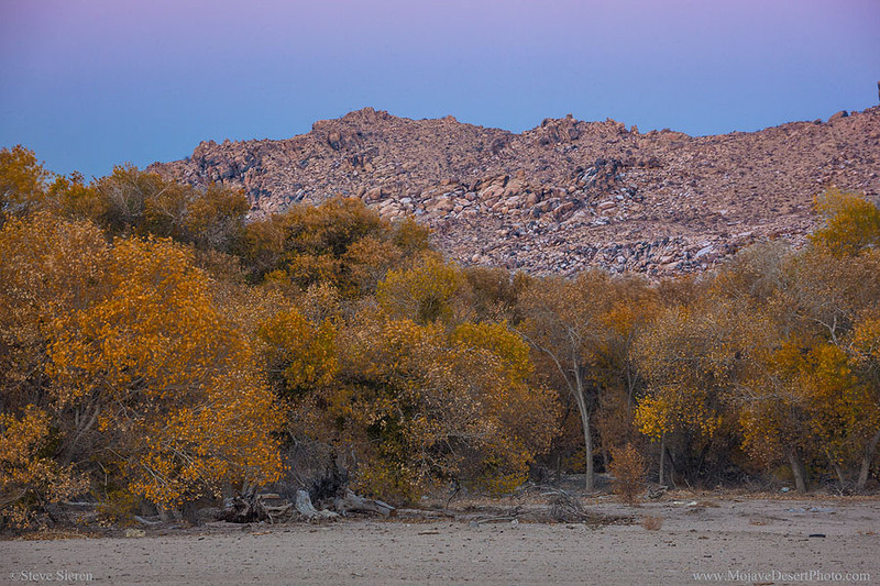 Mojave River Narrows - Victorville, California