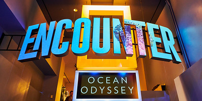 Nat Geo Ocean Odyssey Times Square