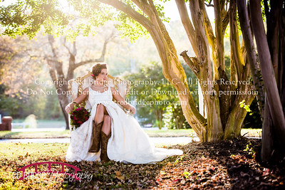 Hudson Manor Styled Shoot : Louisburg, NC