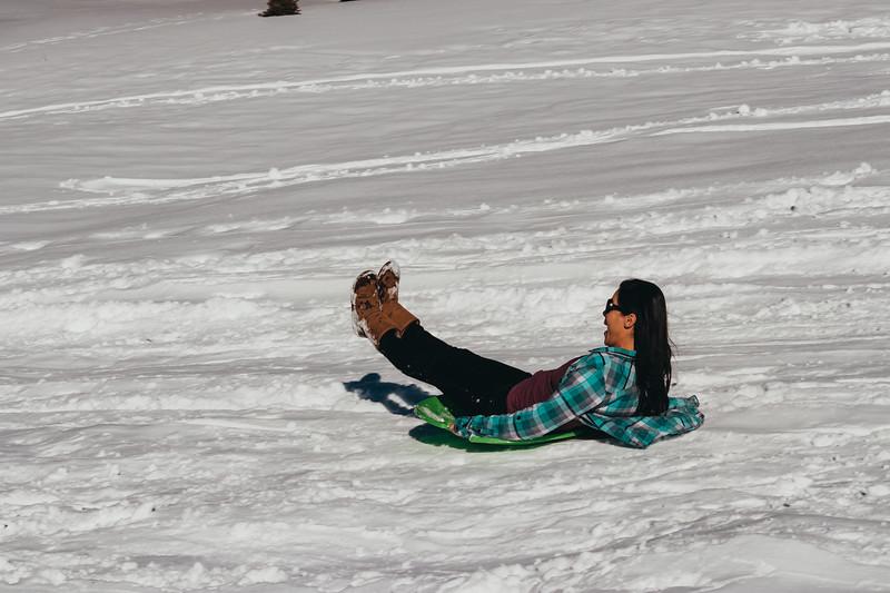 snowMLK-2505.jpg