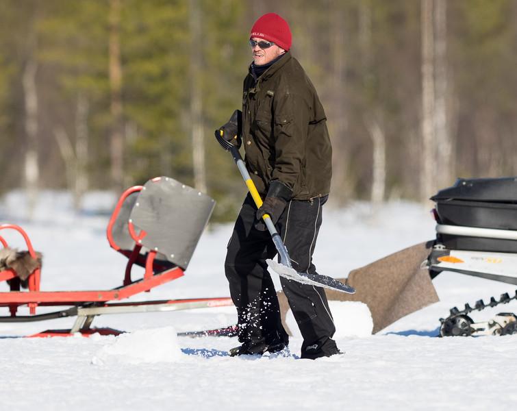 Jani burying salmon for the bears