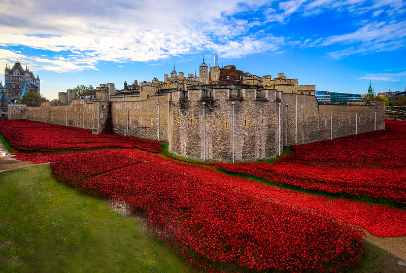 Tower of London, Poppies
