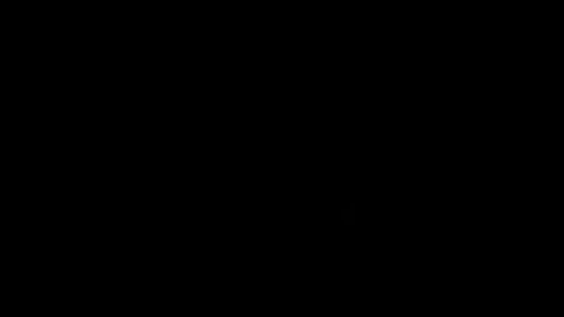 DIXI MONOLOG