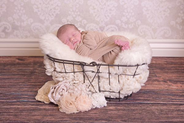 Vienna Newborn