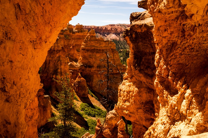 Bryce Canyon National Park 6.jpg