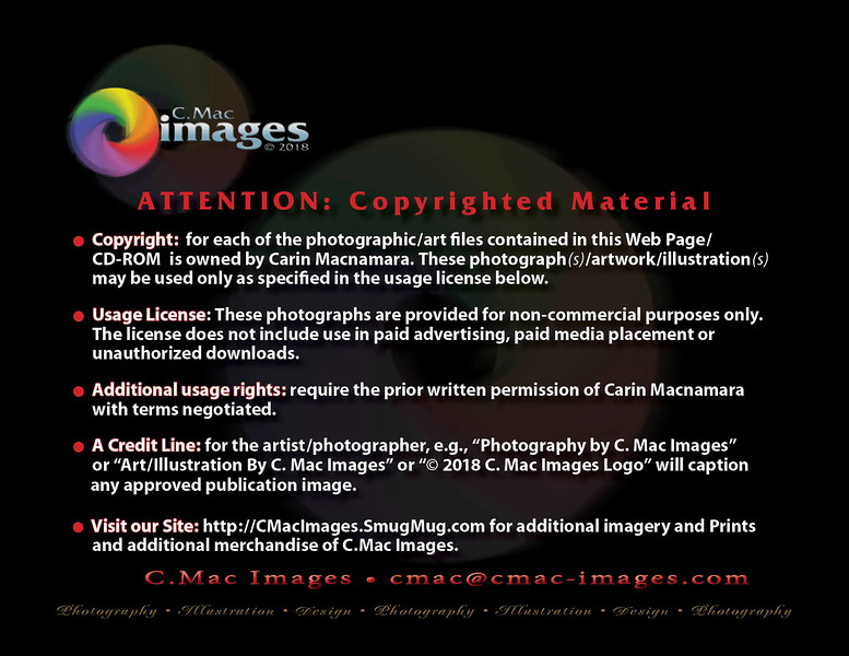 CMACphotoCopyright2018.jpg