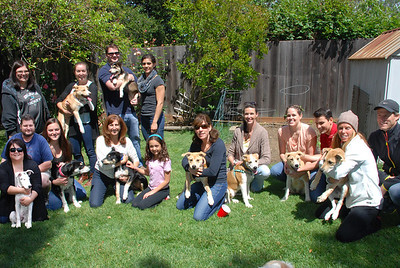 Frozen Litter 5 month reunion April 26, 2014