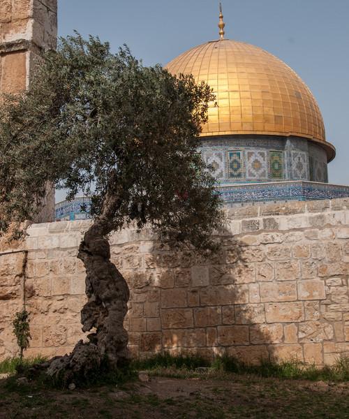 Israel_0757.jpg