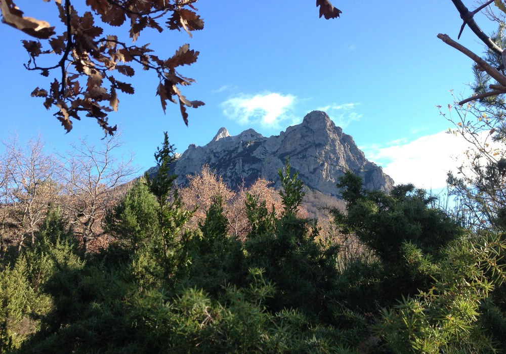 Description of . Foliage frames the Bugarach mountain peak in southern France, Monday, Dec. 10, 2012.  From Russia to California, thousands are preparing for the fateful day, when many believe a 5,125-year cycle known as the Long Count in the Mayan calendar supposedly comes to an end.  The Internet has helped feed the frenzy, spreading rumors that a mountain in the French Pyrenees is hiding an alien spaceship that will be the sole escape from the destruction.  French authorities are blocking access to Bugarach peak from Dec. 19-23 except for the village's 200 residents