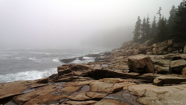 along the coast, near Thunder Hole