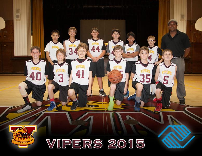 Vipers!.jpg