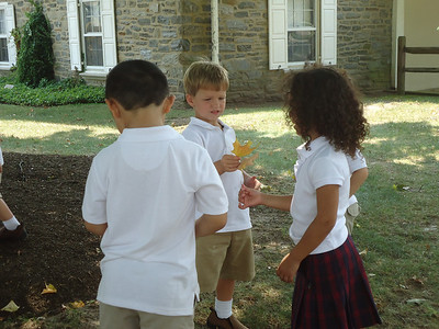 Pre-K Colors Their Adopted Maple Tree During the Season of Summer