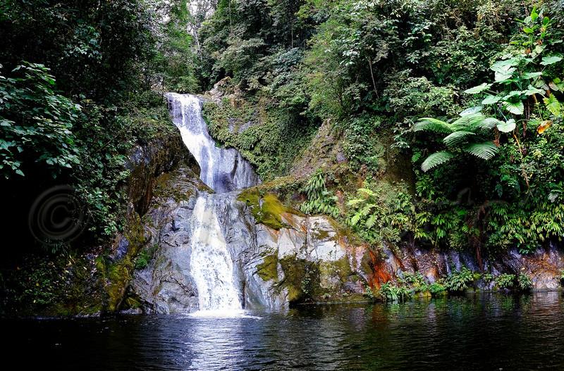 Honduras 0187_.jpg