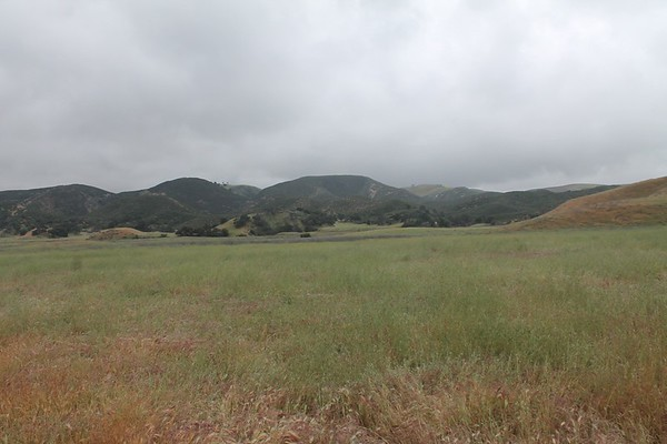 Big Sky Ranch-Horse Shoe Meadow-CLEARED