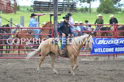 Calf Roping 06-23-13